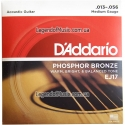 Струны D'Addario EJ17 Phosphor Bronze Medium 13-56