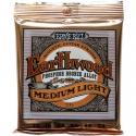 Струны Ernie Ball 2146 Earthwood Phosphor Bronze 12-54